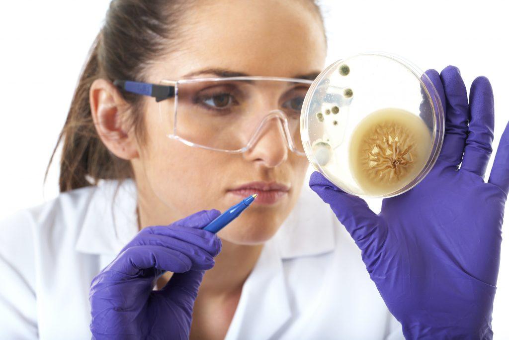woman scientist looking at petri dish
