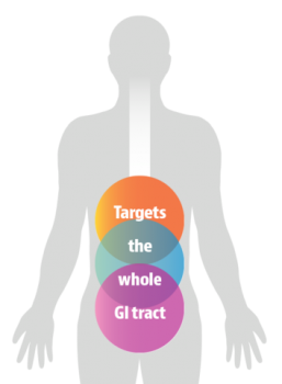 Thera-blend targets the whole GI tract